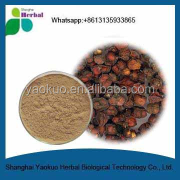 Schizandra Berry Extract,Factory Supply High Quality Pure Natural Schisandra Berry P.E.