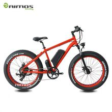 Wholesale 2013 Newest Off Road Electric Bike 48V 1000W Frame Ebike + 48V 20Ah Lithium Battery in Flat Aluminium Case locked
