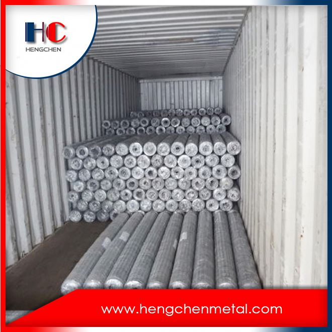 Anping hexagonal chicken wire mesh fabric