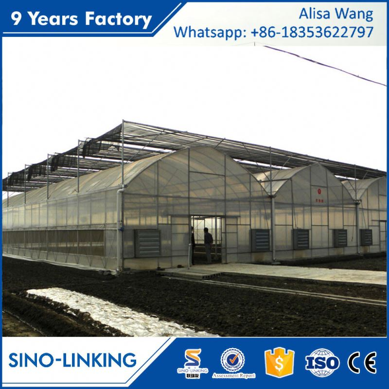SINOLINK 200 micron uv resistant plastic film mushroom greenhouse for seeding