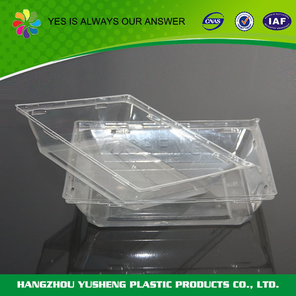 Promotional top quality container fruit tray