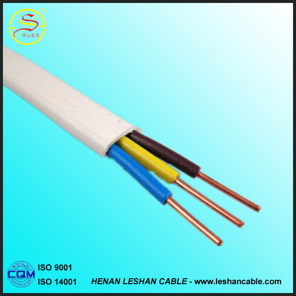 The Best Quality Copper Electrical Wires PVC Insulation with 10mm2 Electric Cable for Southafrica Market at Best Price