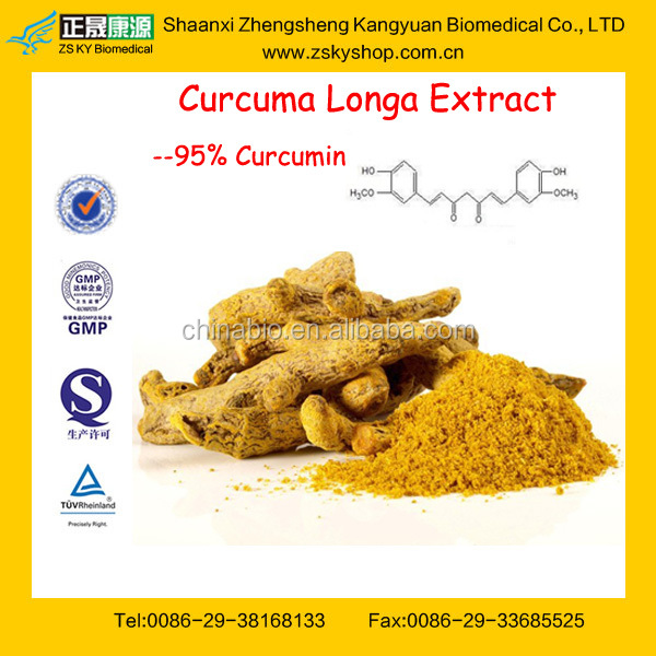 GMP Manufacturer Supply Best Selling Turmeric Extract Curcumin Powder
