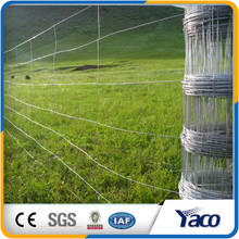 Hot sale agricultural farm fencing pasture wire mesh fencing