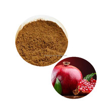 High Quality Pomegranate seed Extract/Polyphenols 40%/Pomegranate seed extract