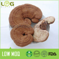 2016 hot sales best Dried Ganoderma Lucidum Mushroom