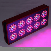 High power Yam Apollo 10 LED grow Light