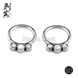 G23 Solid Titanium Jeweled Hinged Segment Ring Titanium Body Piercing Jewelry