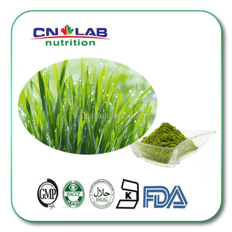Natrual organic Barley grass juice powder