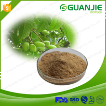 GUANJIE Supply Natural Olive Leaf Extract / Oleuropein 25% Hydroxytyrosol
