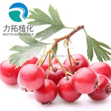Chinese Supply Pure Natural Green Healthy Hawthorn Fruit Extract/ Hawthorn Berry Extract