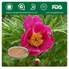 Factory Supply Peony Root Extract,Paeoniflorin2%~10%