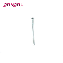 Factory Price Zinc Plated Common Wire Holding Nail