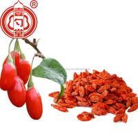 Berry goji certified organic ningxia goji berry dried fruit good for health