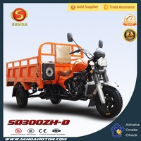 Hot Sale 300CC Luxury and Double Headlights Adult Gasoline Tricycle for Passenger and Cargo SD300ZH-D
