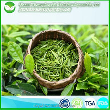 Hot selling factory supply green tea matcha powder/uji matcha green tea powder/green tea extract for slimming and whitening