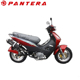Variable Displacements 50cc Moto 110cc 125cc Moped Mini Motorbike