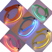 Led Flashing Pet Leashes Dog Bike Leash Pet Lead Harness Pet Chain For Walking A Dog