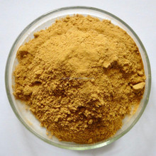 100% Pure Natural Certificated Organic Coltsfoot Extract/Powder