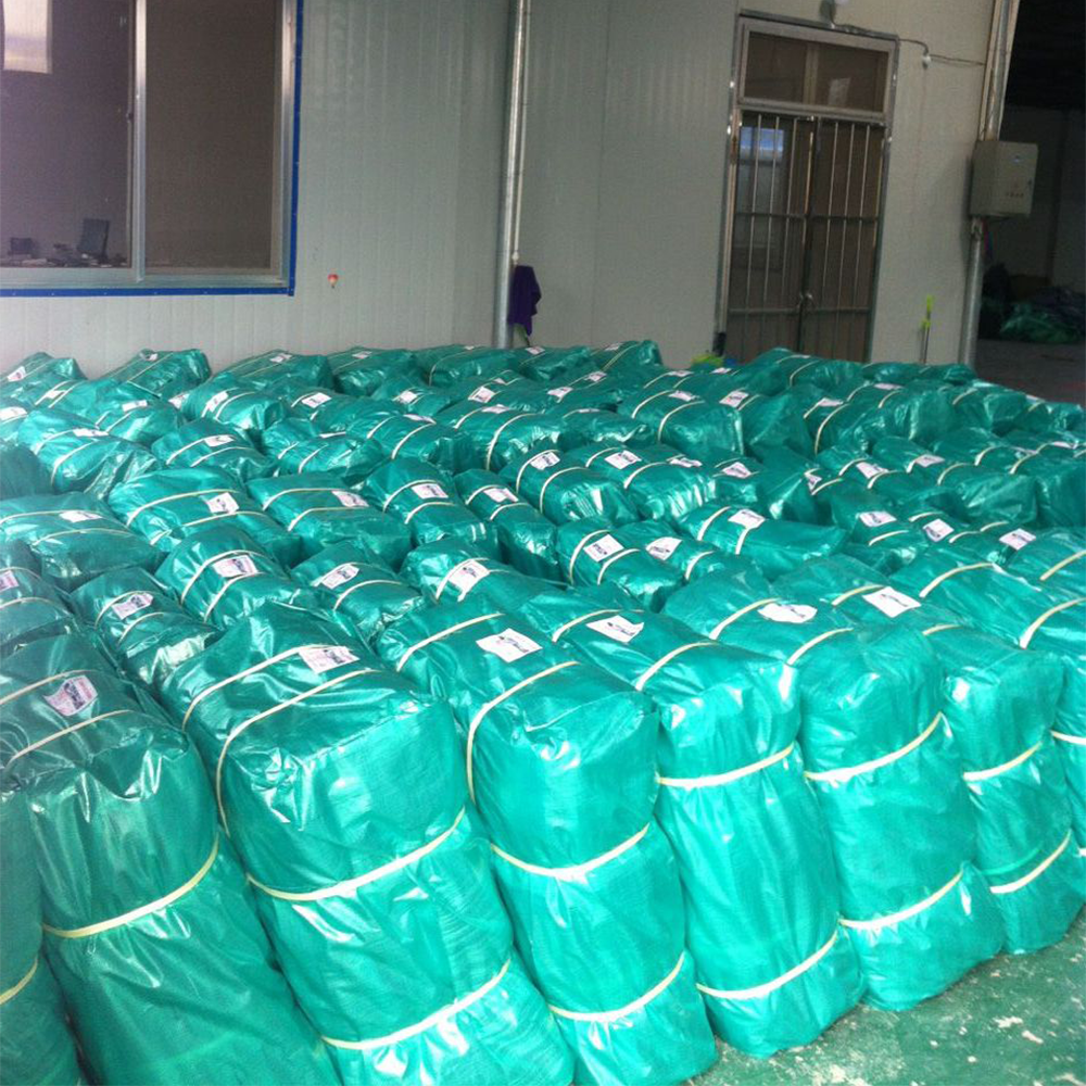 China factory produces China Waterproof pe tarpaulin