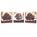 3 Pieces Canvas Wall Art Multi-panel Natural Forest Trees Canvas Print Decor For Living Room Ready to Hang