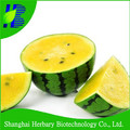 2017 High germination yellow watermelon seeds for growing