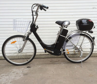 cheap steel frame electric bicycle/cheap bike