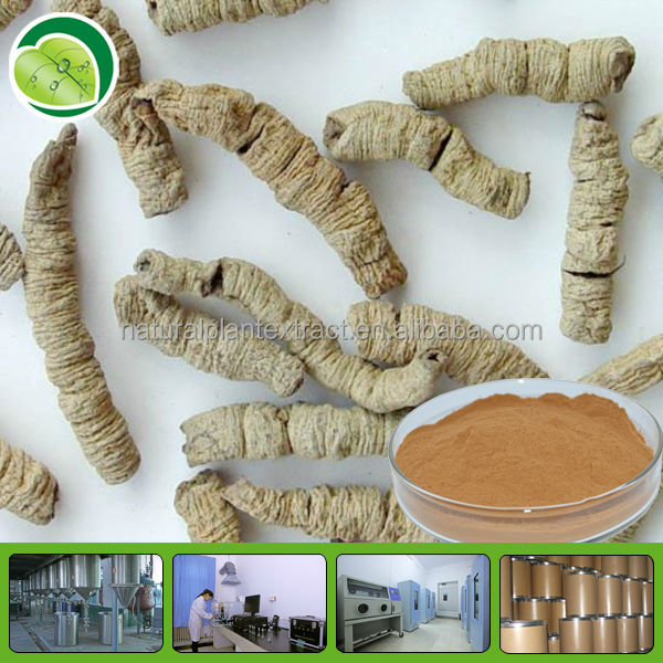 Morinda Officinalis How Root Extract Powder Morinda Citrifolia