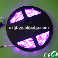 DC12V UV Purple light strip flexible waterproof 60leds/M 5050 led strip light