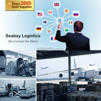 Alibaba Top Air & Sea Shipping Company from China to Worldwide