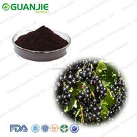 Organic High Quality black currant seed extract