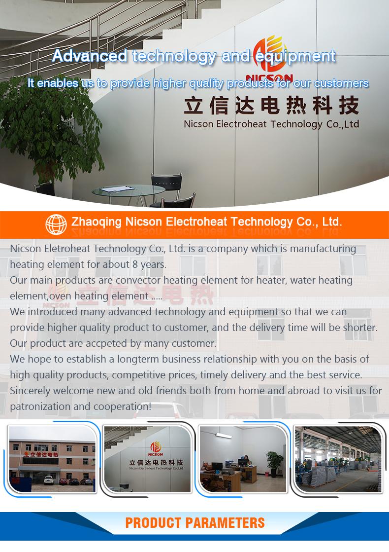 Zhaoqing-Nicson-Electroheat-Technology-Co.,-Ltd_01.jpg