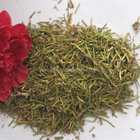 dry ephedra leaf ma huang extract powder