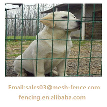 Good quality Galvanized /PVC Euro Fence For dog cage