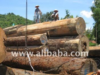 Red cypress log buy shan mu round log red cypress for Cypress log home prices