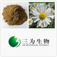 Beautiful Flower Extract Pyrethrum Extract From GMP Manufacturer