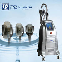 hottest in USA cryolipolysis cool body sculpting machine / body slimming cryolipolysis machine