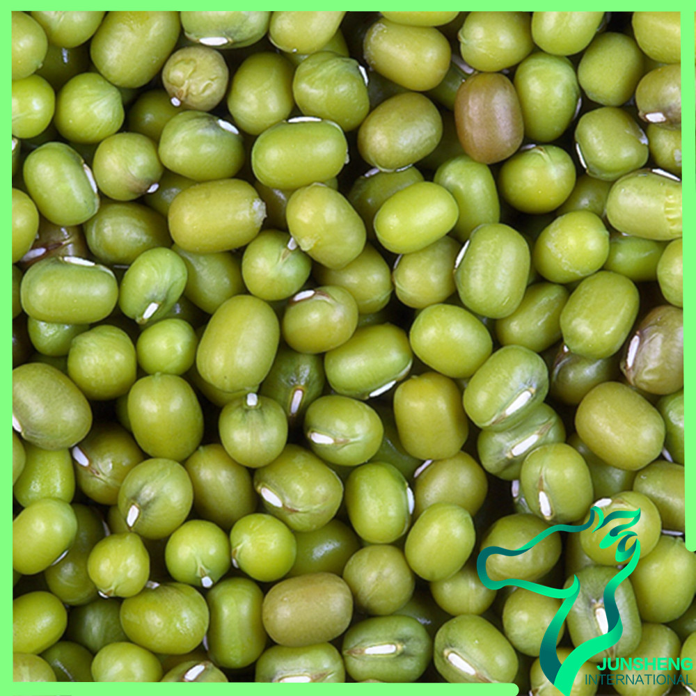 Green Mung Beans Specification Price For Beans