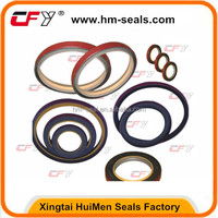 oil seal DKB ,DKBI ,OUY,IUH,TCN for Excavating