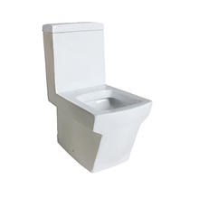 White Floor Mounted Watersaving Types Wc Toilet