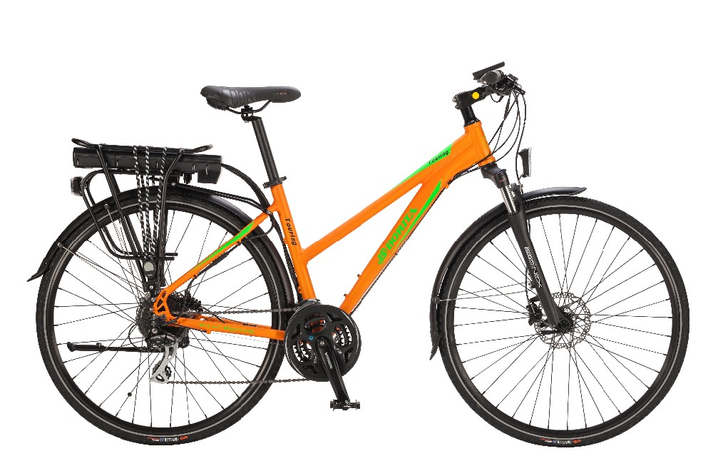 2016 Hot Sell OEM Mountain/MTB Electric Bike