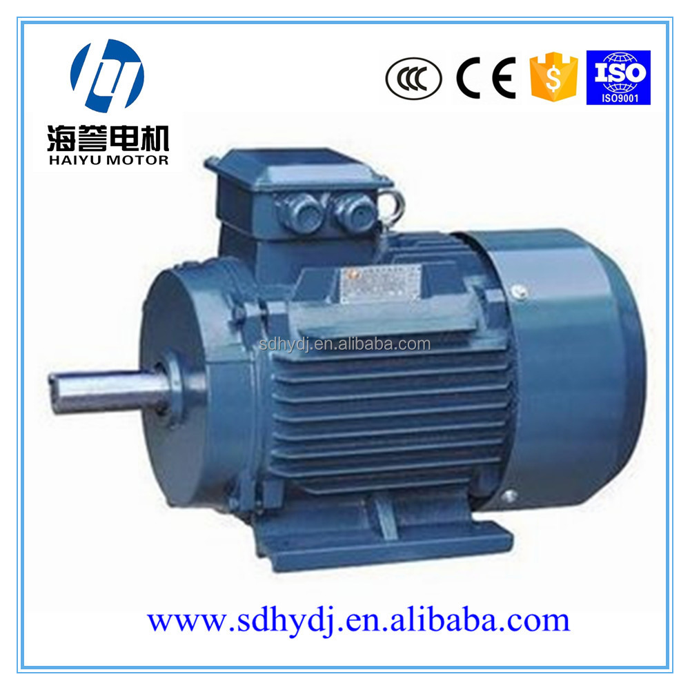 professional electric motor direct factory supply sport rim motor
