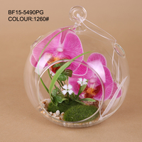 Real touch orchid petals and grass in glass hanging pot