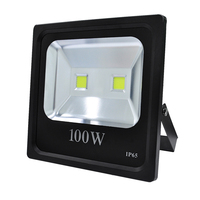 CE approved Slim COB 100 watt flood light led with die cast aluminum ip65