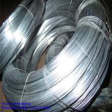 G16 G18 G20 G21 G22 Galvanized Wire/G i binding wire/galvanized iron wire GW--031D