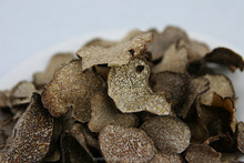 High Quality Black Truffle Mushrooms