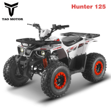 Chinese QUAD ATV for sale 125cc Hunter 125