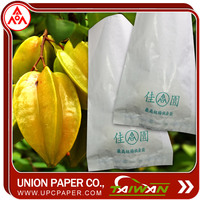 Carambola protection bag Grow Bags For Fruit