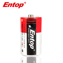 17 Years OEM or ODM Hot Selling Zinc Carbon D Size Battery