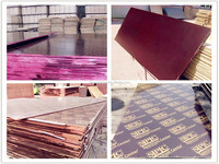 formwork wood sheet,trailer plywood,construction plywood for building